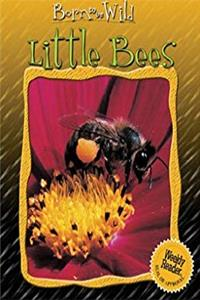 Download Little Bees (Born to Be Wild) eBook
