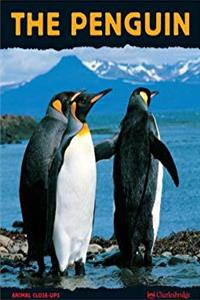 Download The Penguin (Animal Close-Ups) eBook