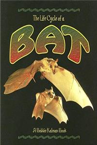 Download The Life Cycle of a Bat eBook