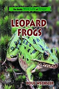 Download Leopard Frogs (Really Wild Life of Frogs) eBook