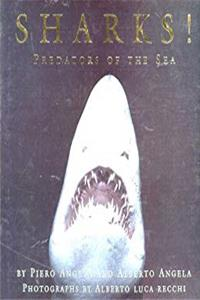 Download Sharks!: Predators of the Sea eBook
