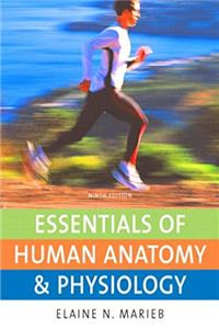 Download Essentials of Human Anatomy & Physiology Value Package (includes Get Ready for A&P) eBook